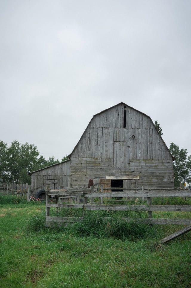 A rustic barn in Glenbush, Saskatchewan sits empty by Clint Bargen Photography.