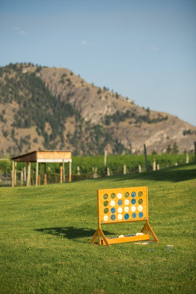 A large game of plinko with mountains in the background near Olivier, BC at Covert Farms. Photo by Clint Bargen Photography.